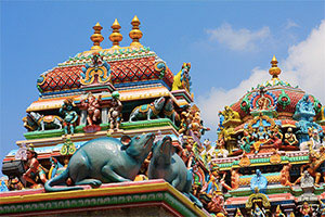 ATP Chennai Open Winner 2017