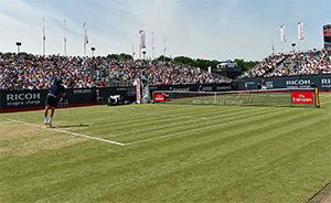 ATP Ricoh Open Winner 2017